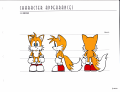 SA Stylebook Tails Concept2.png