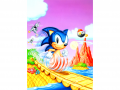 SSS SONICG .png