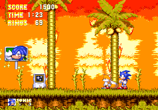 Sonic3 MD BlueKnucklesSignpost.png