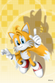SonicSkins tails02.png