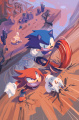 IDW Sonic Issue3 VariantTextless Cover.jpg