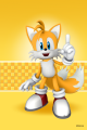 SonicSkins tails01.png